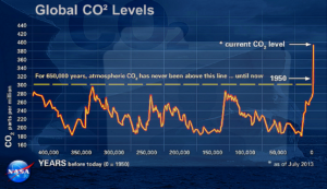 Cosa vuoi che sia la sparizione della foresta europea... forse questo storico del livello di CO2 in atmosfera negli ultimi 400.000 anni può rendere l'idea
