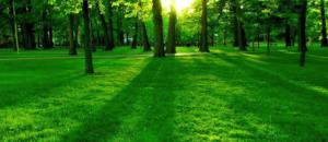 Armonia e serenità