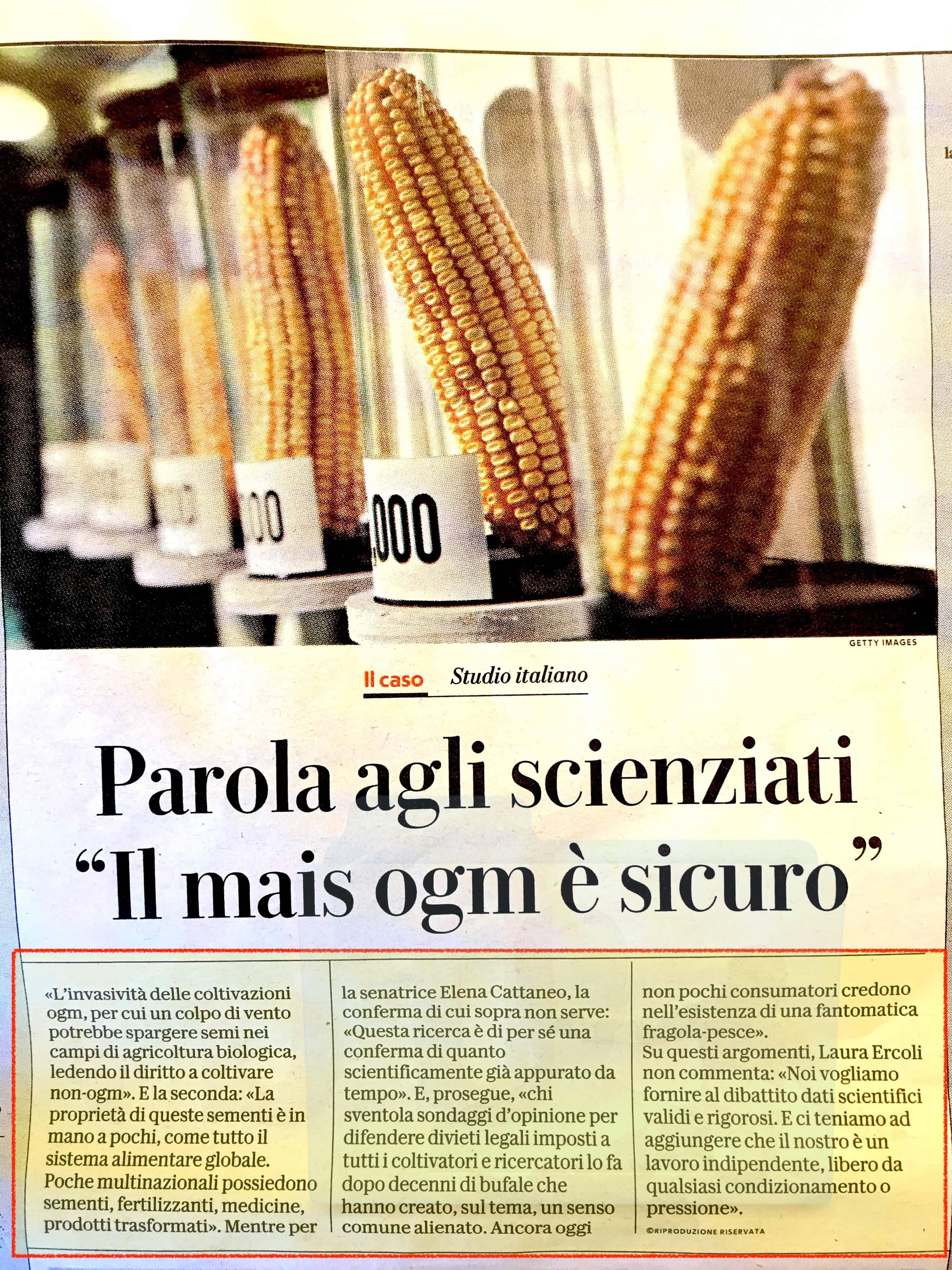 Un articolo di giornale che presenta il risultato di uno studio sugli organismi geneticamente modificati